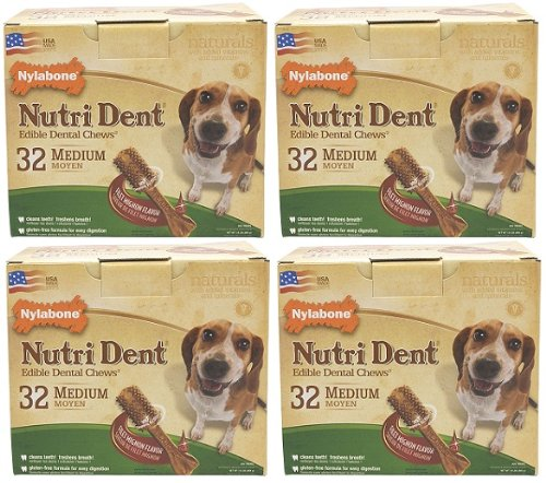 Nylabone Nutri Dent Filet Mignon 128ct Pantry Pack Medium (4x32ct), My Pet Supplies