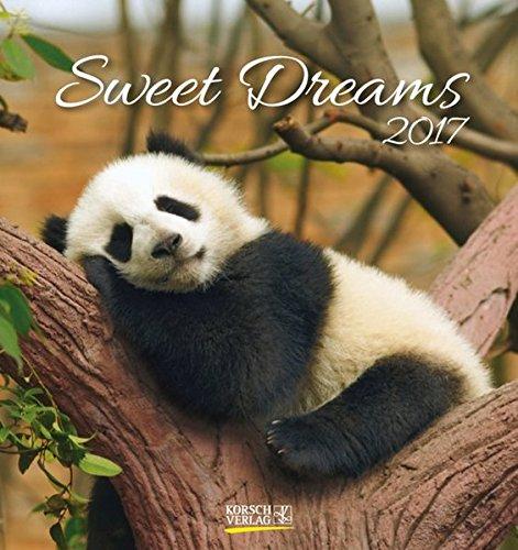 Sweet Dreams 2017: aufstellbarer Postkartenkalender