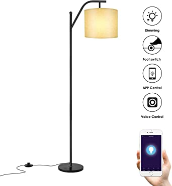 Amazon.com: Lámpara de pie, Wellwerks Smart Light(con ...