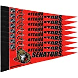 Rico MPS9303 NHL Senators 8 Pc Mini Pennant Pack Sports Fan Home Decor, Multicolor, One Size