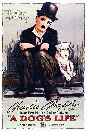 A Dog's Life Charles Chaplin Fine Art Movie 16x20 (Chaplin Movie Poster)