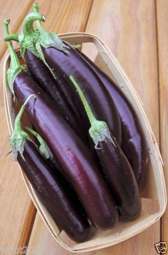 - Eggplant,organic,purple Long Eggplant, Italian Heirloom~ 300 Vegetable Seeds