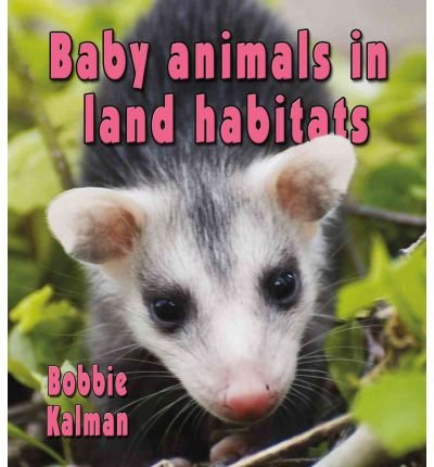 Download [(Baby Animals in Land Habitats )] [Author: Bobbie Kalman] [Aug-2011] PDF