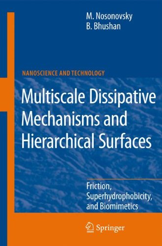 Multiscale Dissipative Mechanisms and Hierarchical Surfaces: Friction, Superhydrophobicity, and Biomimetics (NanoScience and Technology)