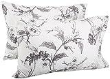 Pinzon Signature 190-Gram Cotton Heavyweight Velvet Flannel Pillowcases - Standard, Floral Graphite