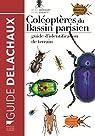 Coléoptères du bassin parisien par Mériguet
