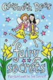 Fairy Secrets (Fairies (MacMillan))