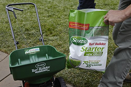 Buy grass seed for hot weather