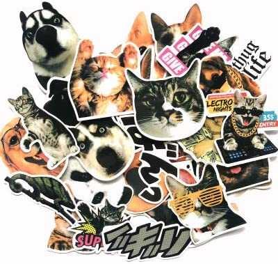 30Pcs, Pet EKIND Not Repeat Graffiti Stickers for Tablet Skateboard Car Decals Bicycle