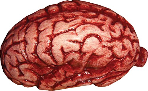 UHC Scary Realistic Human Brain Horror Party Decoration Latex Halloween Prop