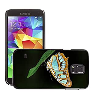 Hot Style Cell Phone PC Hard Case Cover // M00046109 insects butterfly animals // Samsung Galaxy S5 i9600