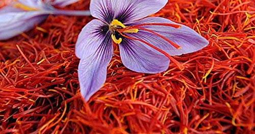 Premium Saffron Threads Italian Processed - High Grade Persian Red Saffron - Zafferano Puro in Fili - 2 Gr Sold By Serendipity Life