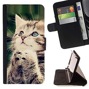 Momo Phone Case / Flip Funda de Cuero Case Cover - Gatito Orar americana de pelo largo Wirehair; - HTC Desire 626