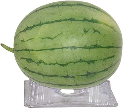 Set of 12 Homarden Melon and Squash Cradles