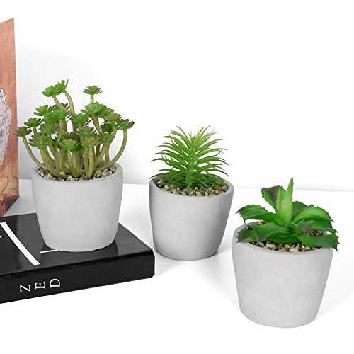 Mixed Artificial Succulent Plants in Modern Unglazed Gray Clay Pots, Set of 3