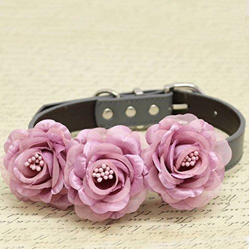 Amazon Dusty Pink Floral Dog Collar Wedding Pet Accessory