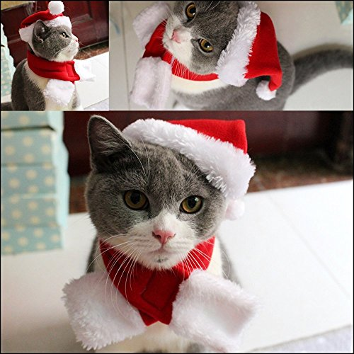 Pet Leso Cat Christmas Hat with Muffler Puppy Dog Santa Hat, Red -S -