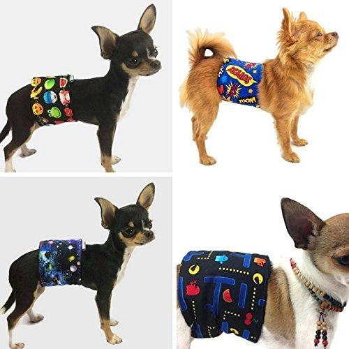 The Dog Belly Band Geeky 4-Pack