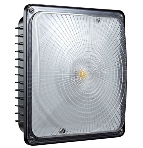 Festnight 65W LED Canopy Light 8,125 Lumens,(300W Eq.), 5000K AC100-277V Waterproof IP65 5 Years Warranty by Festnight