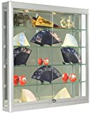 Wall-Mounted, Silver Aluminum Glass Display Case, Illuminated, Locking Sliding Glass Doors, Ships Fully Assembled