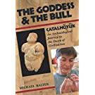 The Goddess and the Bull: Catalhoyuk - an Archaeological Journey to the Dawn of Civilization