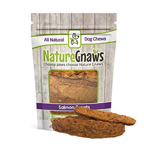 Nature Gnaws Smoked Salmon Jerky Strips (8 oz) - 100% Natural Grain Free Dog (Hickory Smoked Salmon)