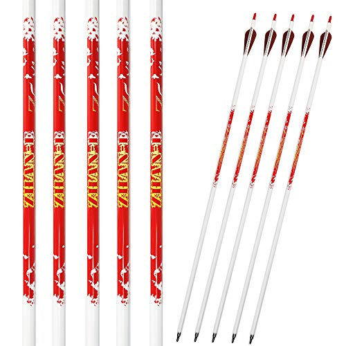 Zhan Yi 6 Pack Carbon Hunting Archery Arrows 340 Spine with Plastic Vanes Removable Tips for Compound Recurve Bows (29 inch Arrows) (65 Pound Compound Bow)