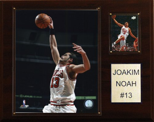 NBA Joakim Noah Chicago Bulls Player Plaque ()