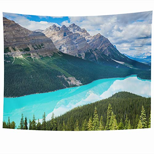 Ahawoso Tapestry 60x50 Inch Wild Blue Alberta Peyto Lake Banff Park Pine Canada Nature Awesome Bright Calm Canadian Forest Wall Hanging Home Decor for Living Room Bedroom Dorm