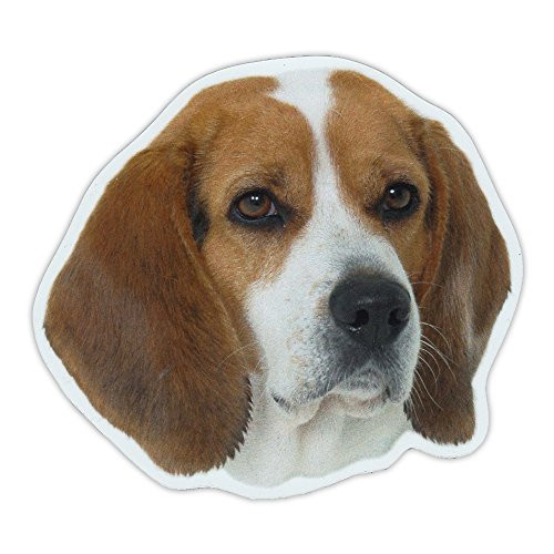 Beagle Dog Sticker - Magnetic Bumper Sticker - Beagle Dog Breed Picture Magnet - Cars, Trucks, SUVs, Refrigerators - 5