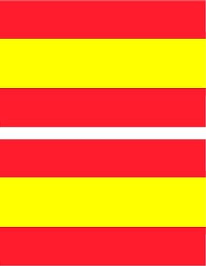 Adhesivo bandera España set en 2 cada 50 x 85 mm: Amazon.es: Coche ...