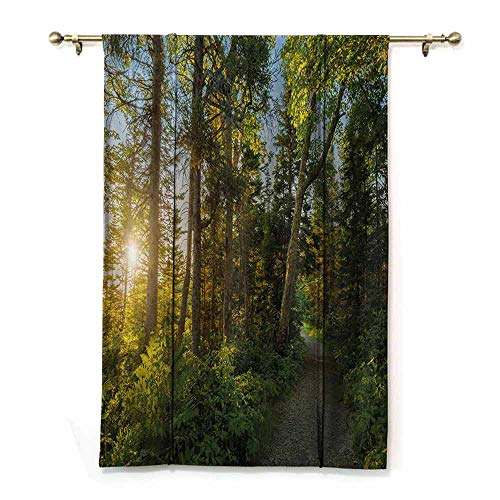 HCCJLCKS Roman Curtain Landscape National Park in Cape Breton Highlands Canada Forest Path Trees Tranquility Photo Bedroom Balcony Living Room Blue Green W27 xL64