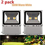 Richday 2pcs LED Flood Light 100W Super Bright Outdoor Lighting Waterproof 85-265V Security lights 3000K - 3500K Warm white Floodlight