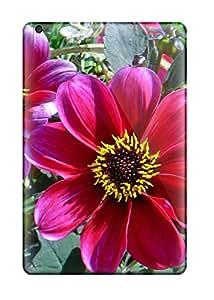 4580089I31090868 High-quality Durability Case For Ipad Mini(summer Flowers)