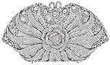 MUUHOO Luxury Crystal Clutch for Women 3D Flower Rhinestone Evening Bag (Silver)
