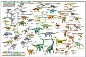 Dinosaur Room Decor Amazon