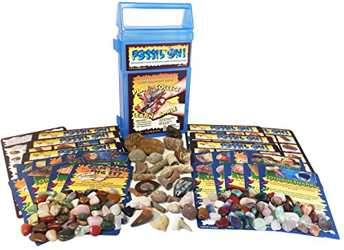 FOSSIL ON! Game with Fossil, Rock & Mineral Collection – Trilobite, Shark, Dinosaur, Amethyst, Jasper and lots more - Collect and Learn with STEM-based Educational Science Kit in Carrying Case by iLaughnLearn