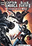 img - for Captain America/Black Panther: Flags of Our Fathers (2010 series) #4 book / textbook / text book