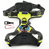Best GoPro for dog - SmilePowo Pet Dog Harness 360 degree rotation Adjustable Review