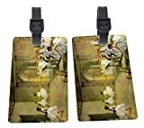 Rikki Knight Edgar Degas Art Hall of the Opera Ballet Design Premium Quality Plastic Flexi Luggage Tags with Strap Closure - Great for Travel (set of 2)