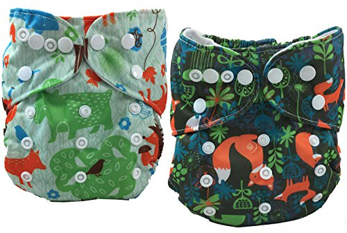 Terra Friendly Cloth Pocket Diapers - 2 Double