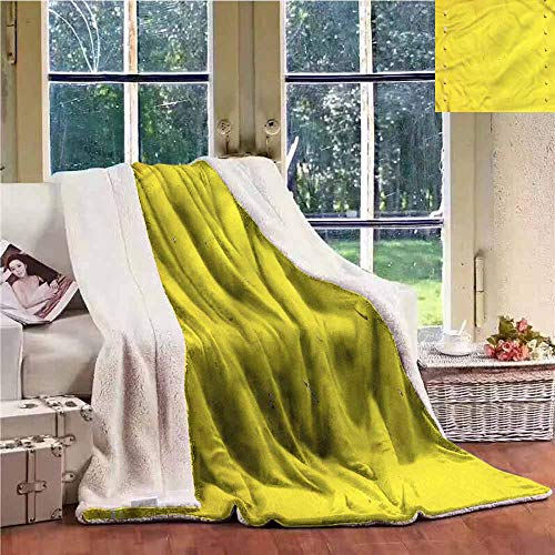 - Sunnyhome Lamb Velvet Yellow Industrial Plate Photo Personalized Baby Blanket W59x31L
