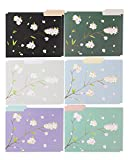 File Folders - 12-Pack Decorative File Folders, 6 Japanese Cherry Blossom Design Colorful File Folders, Designer File Folders - Letter Size 1/3 Cut 1/2 inch Top Memory Tab, 11.5 x 9 inches