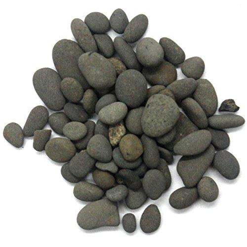 Black Polished River Pebbles for Terrarium, Aquarium Fish Tank Decorations, Fairy Garden or Fantastic Yard, Diy Projects 1 bag 25g