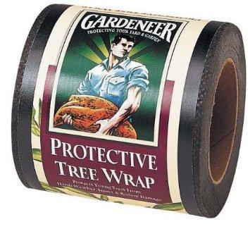 Dalen #RAP-15 3''x50' Tree Wrap