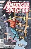 American Splendor Season 2 Issue #4 Comic