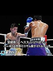 宮崎亮×ヘスス・シルベストレ(2013) WBA世界ミニマム級タイトルマッチ