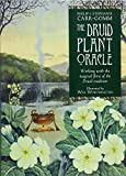 Druid Plant Oracle: Working with the Magical