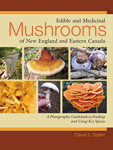 (Edible and Medicinal Mushrooms of New England and Eastern Canada: A Photographic Guidebook to Finding and Using Key Species)