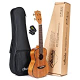 Amumu AM-ASMA-C All Solid Mahogany Concert Ukulele 23 Inches With Tuner and Gig Bag